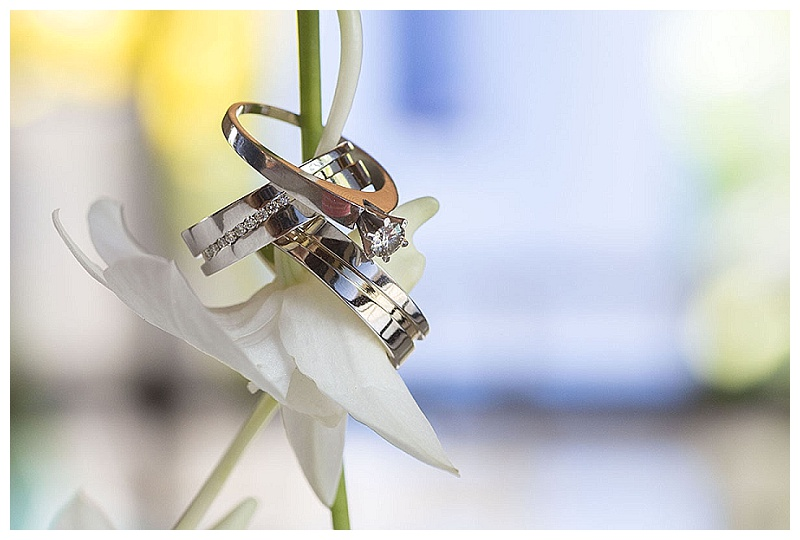 ring shot, maro, orchid flower, costa rica, photography